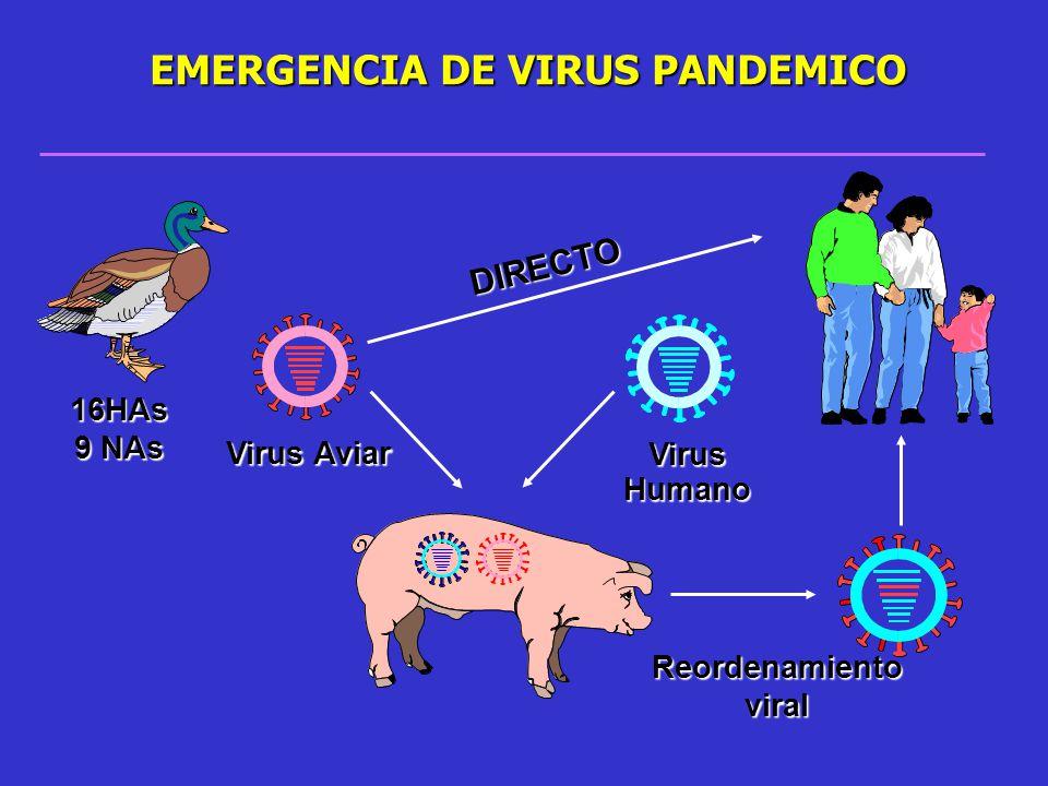 EMERGENCIA DE VIRUS PANDEMICO