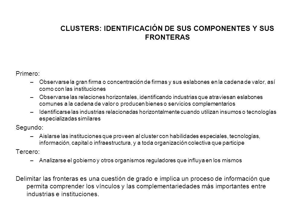 CLUSTERS: IDENTIFICACIÓN DE SUS COMPONENTES Y SUS FRONTERAS