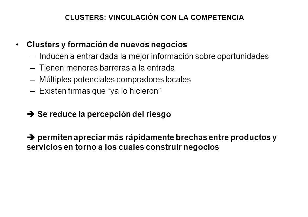 CLUSTERS: VINCULACIÓN CON LA COMPETENCIA