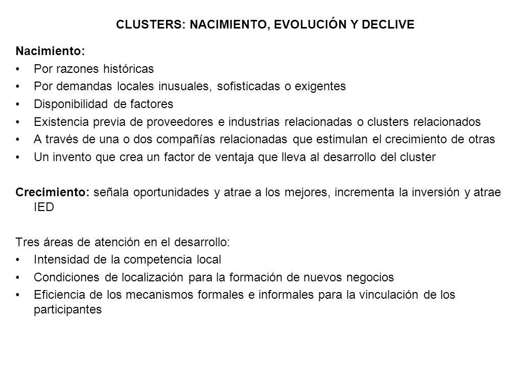 CLUSTERS: NACIMIENTO, EVOLUCIÓN Y DECLIVE