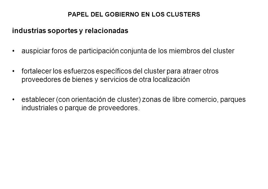 PAPEL DEL GOBIERNO EN LOS CLUSTERS