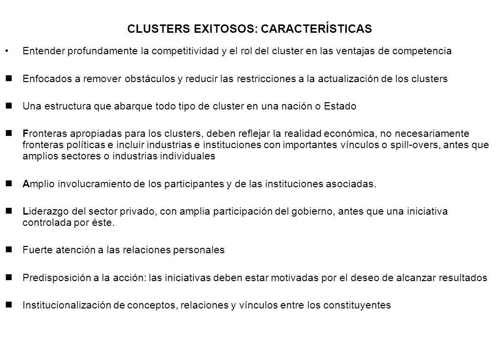 CLUSTERS EXITOSOS: CARACTERÍSTICAS