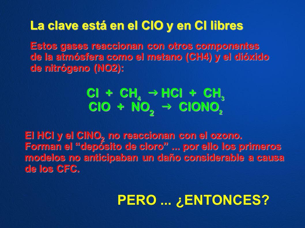PERO ... ¿ENTONCES La clave está en el ClO y en Cl libres