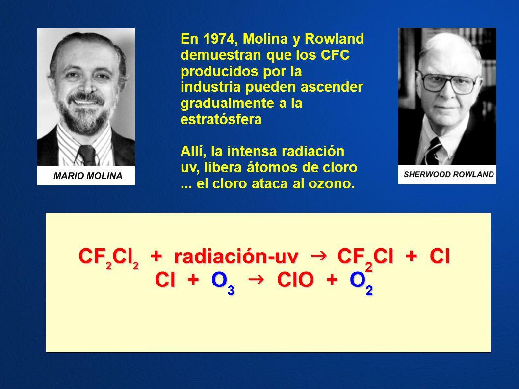 CF2Cl2 + radiación-uv  CF2Cl + Cl
