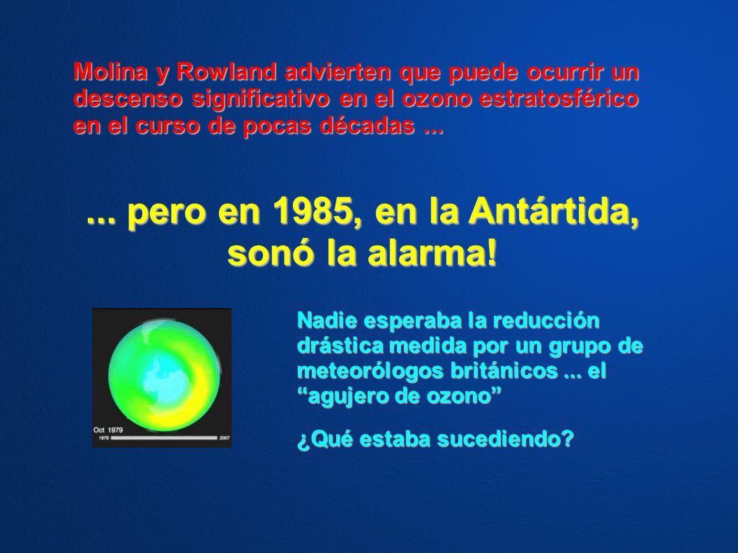 ... pero en 1985, en la Antártida, sonó la alarma!