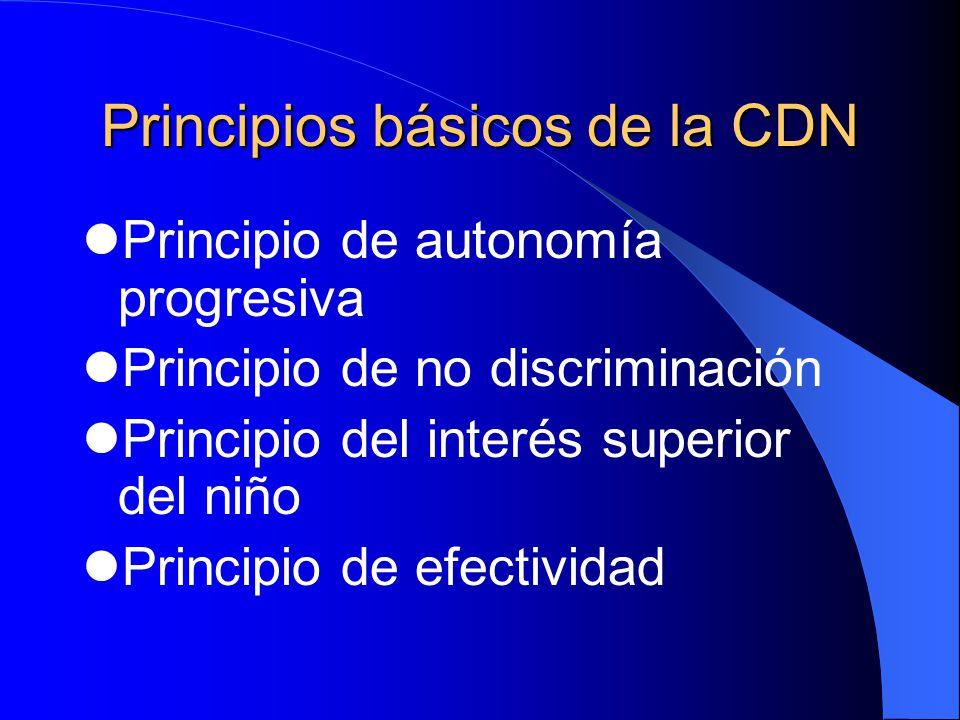 Principios básicos de la CDN