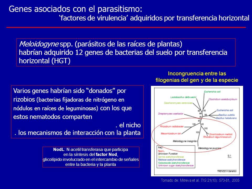 Genes asociados con el parasitismo: