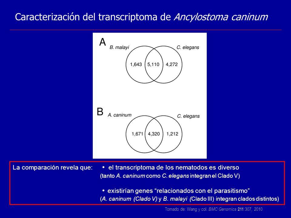 Tomado de: Wang y col. BMC Genomics 211:307, 2010