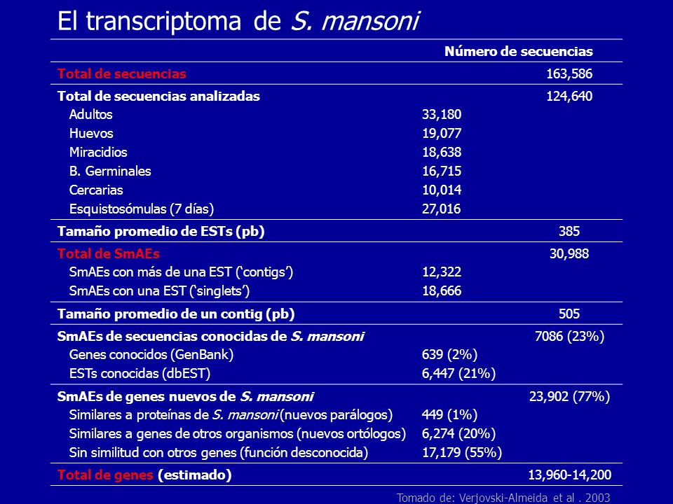 El transcriptoma de S. mansoni