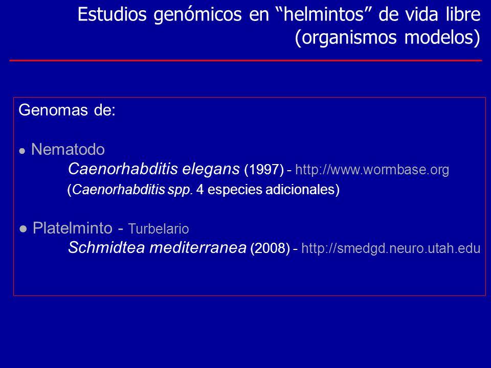 Estudios genómicos en helmintos de vida libre (organismos modelos)