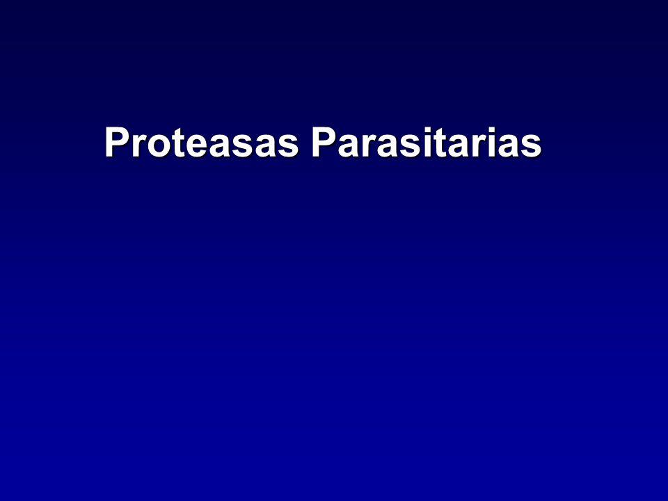 Proteasas Parasitarias