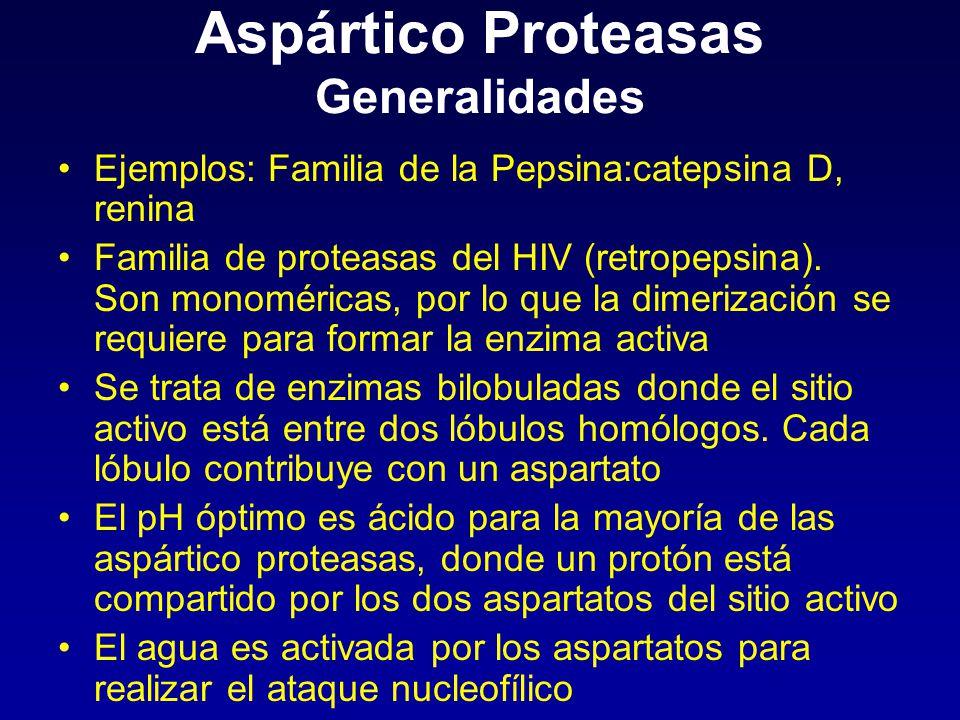 Aspártico Proteasas Generalidades