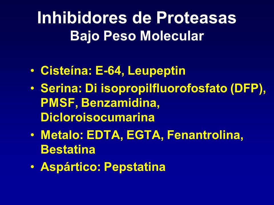 Inhibidores de Proteasas Bajo Peso Molecular