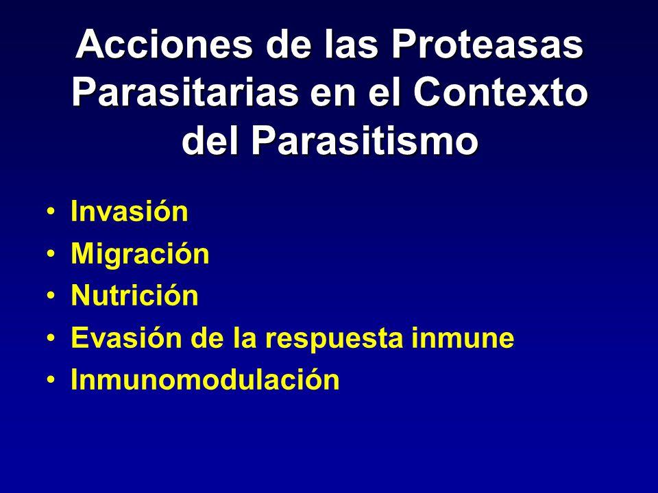 Acciones de las Proteasas Parasitarias en el Contexto del Parasitismo