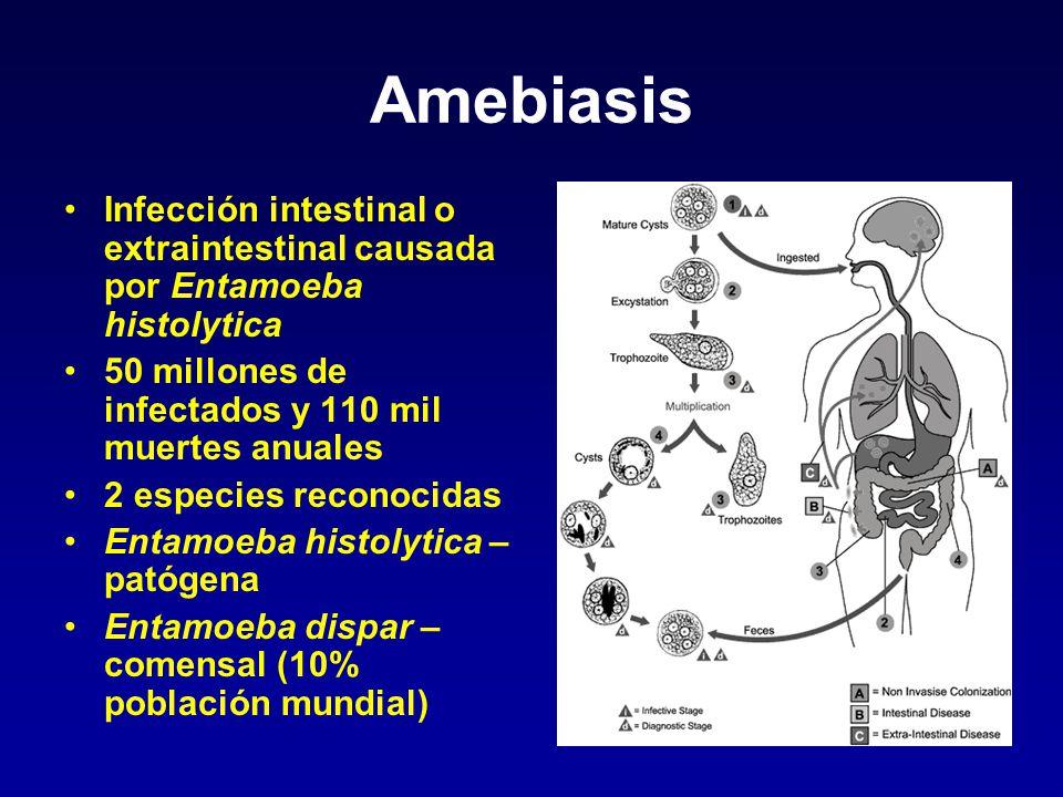 Amebiasis Infección intestinal o extraintestinal causada por Entamoeba histolytica. 50 millones de infectados y 110 mil muertes anuales.