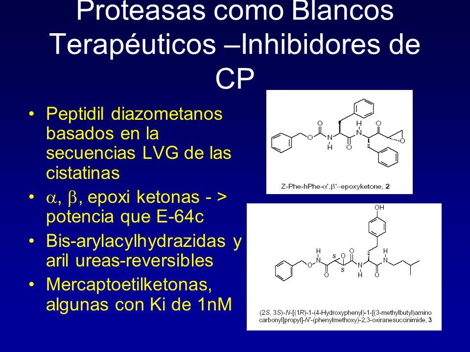 Proteasas como Blancos Terapéuticos –Inhibidores de CP