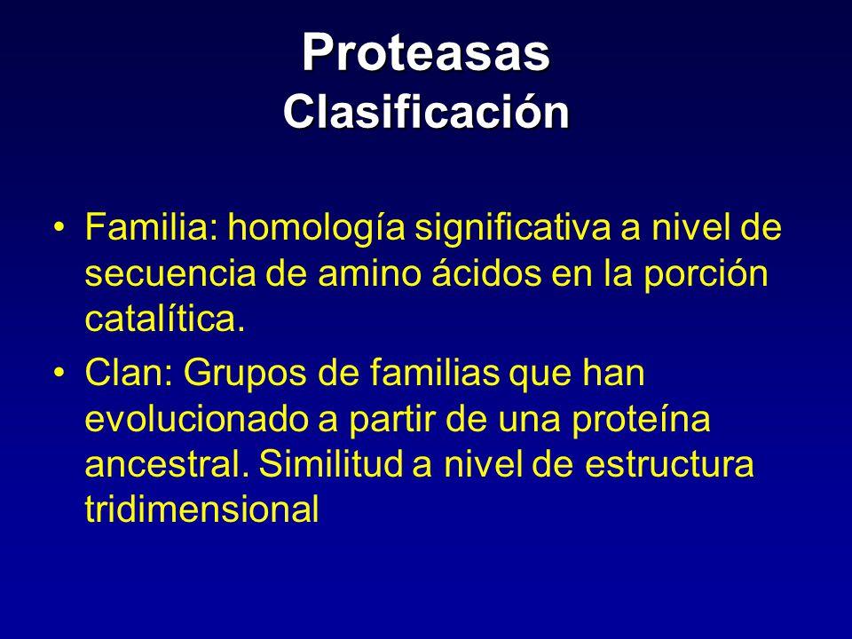 Proteasas Clasificación