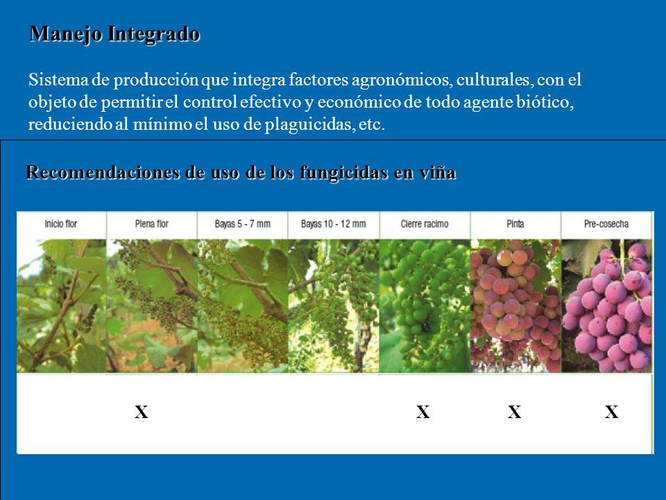 Manejo Integrado Recomendaciones de uso de los fungicidas en viña