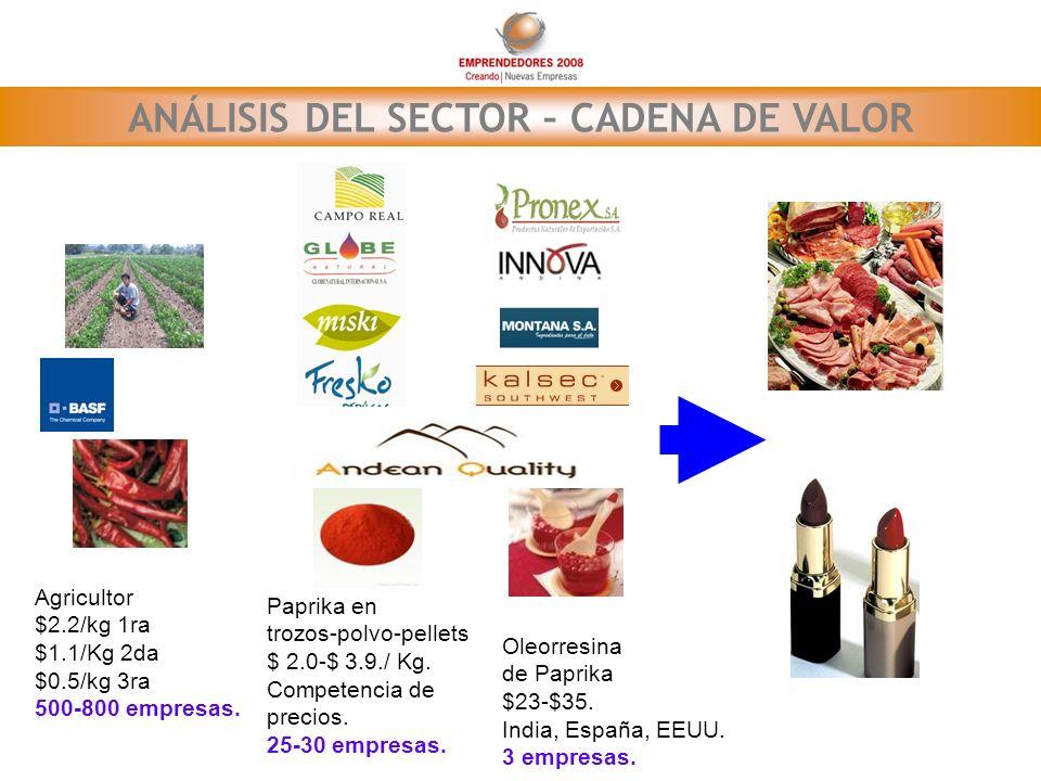 ANÁLISIS DEL SECTOR – CADENA DE VALOR