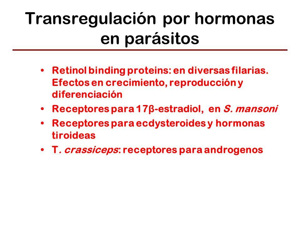 Transregulación por hormonas en parásitos