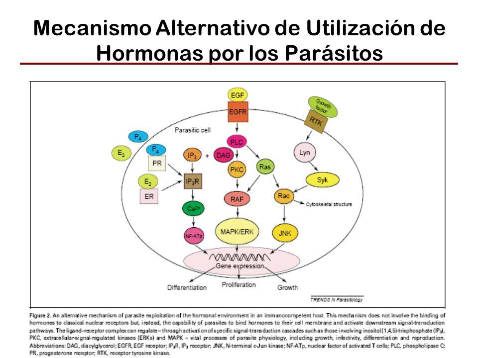 Mecanismo Alternativo de Utilización de Hormonas por los Parásitos
