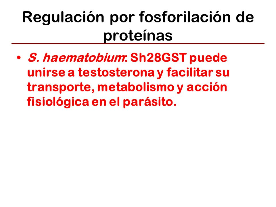 Regulación por fosforilación de proteínas