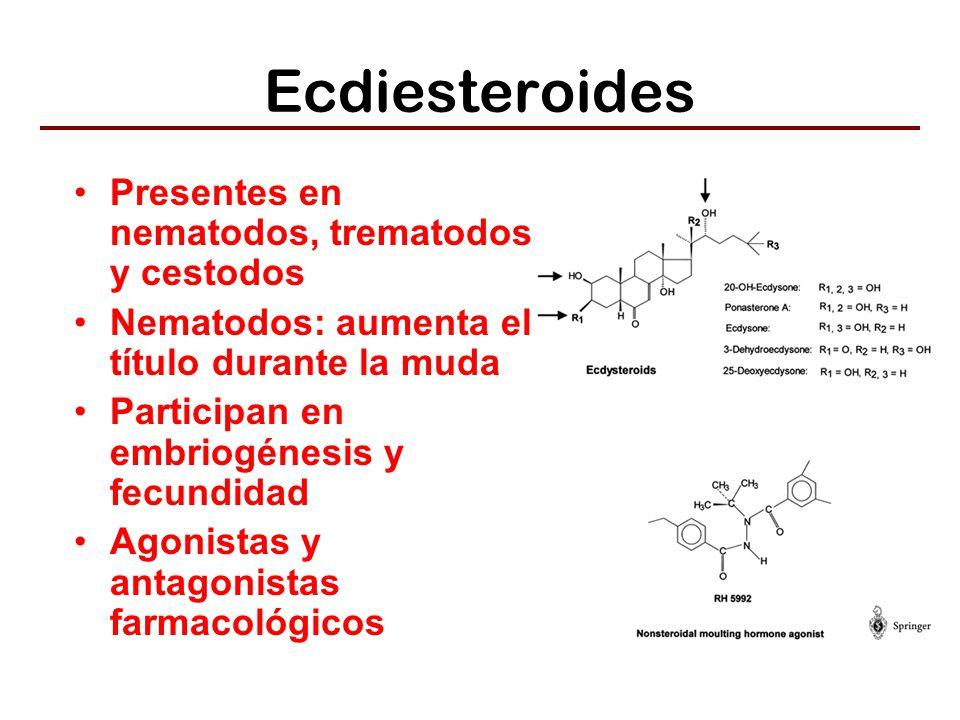 Ecdiesteroides Presentes en nematodos, trematodos y cestodos
