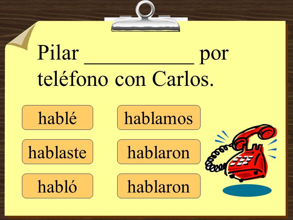 Pilar __________ por teléfono con Carlos.