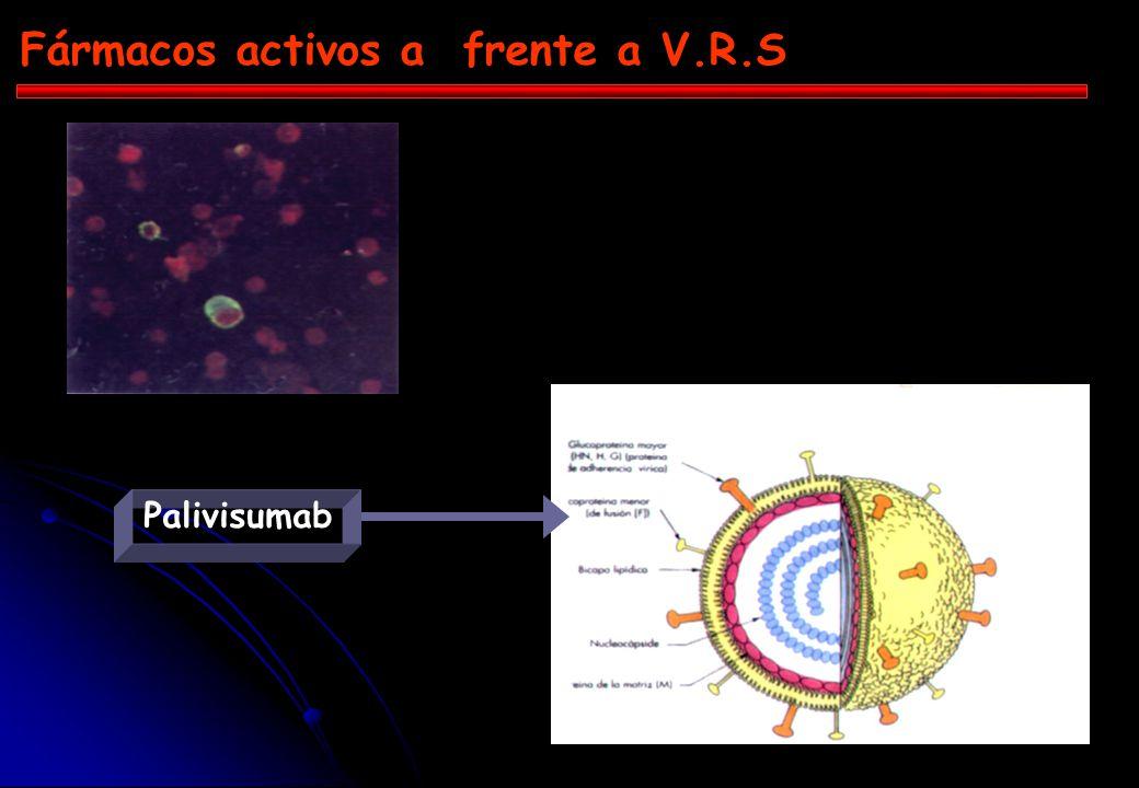 Fármacos activos a frente a V.R.S
