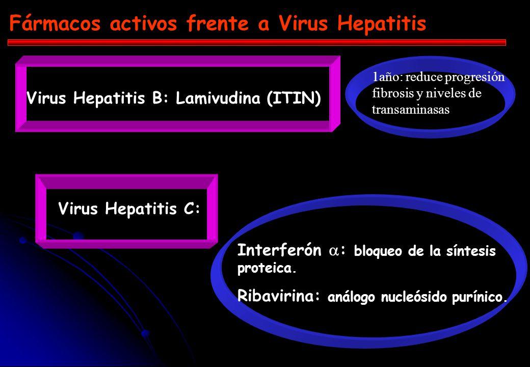 Fármacos activos frente a Virus Hepatitis