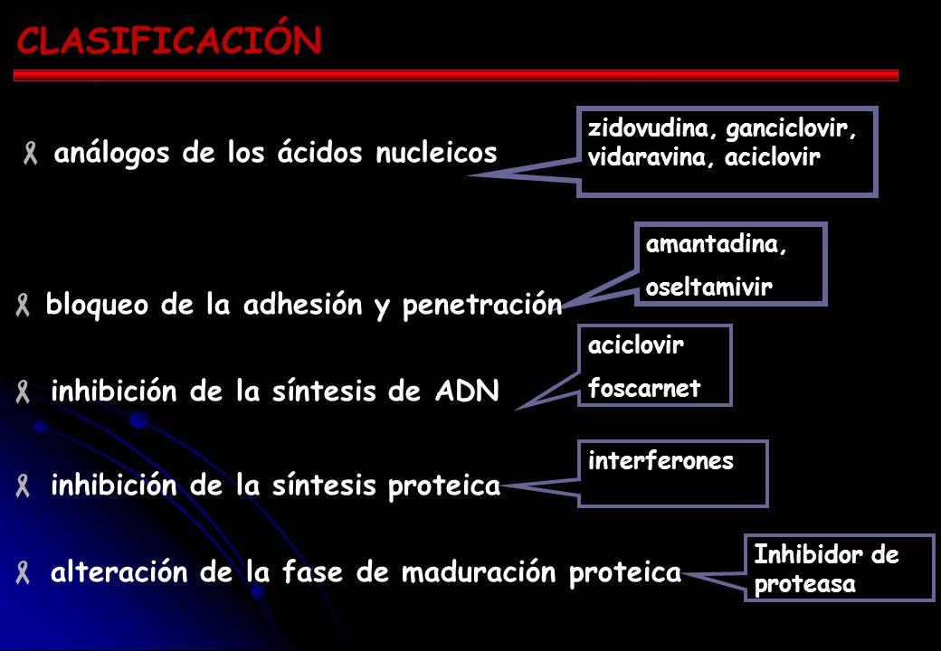 CLASIFICACIÓN análogos de los ácidos nucleicos