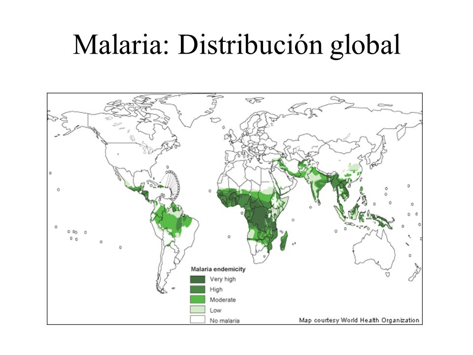 Malaria: Distribución global