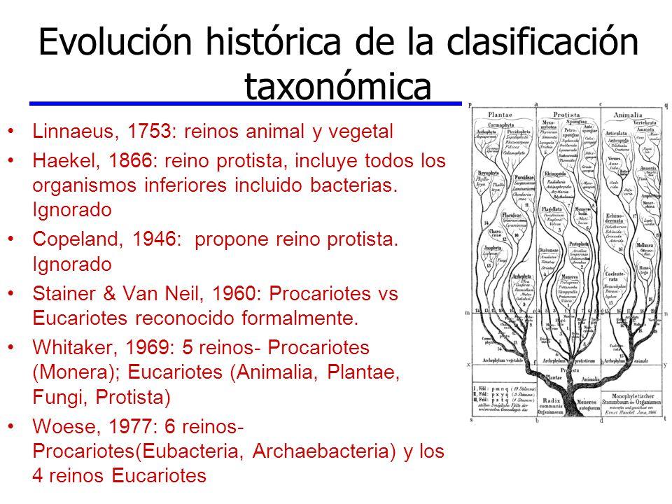 Evolución histórica de la clasificación taxonómica