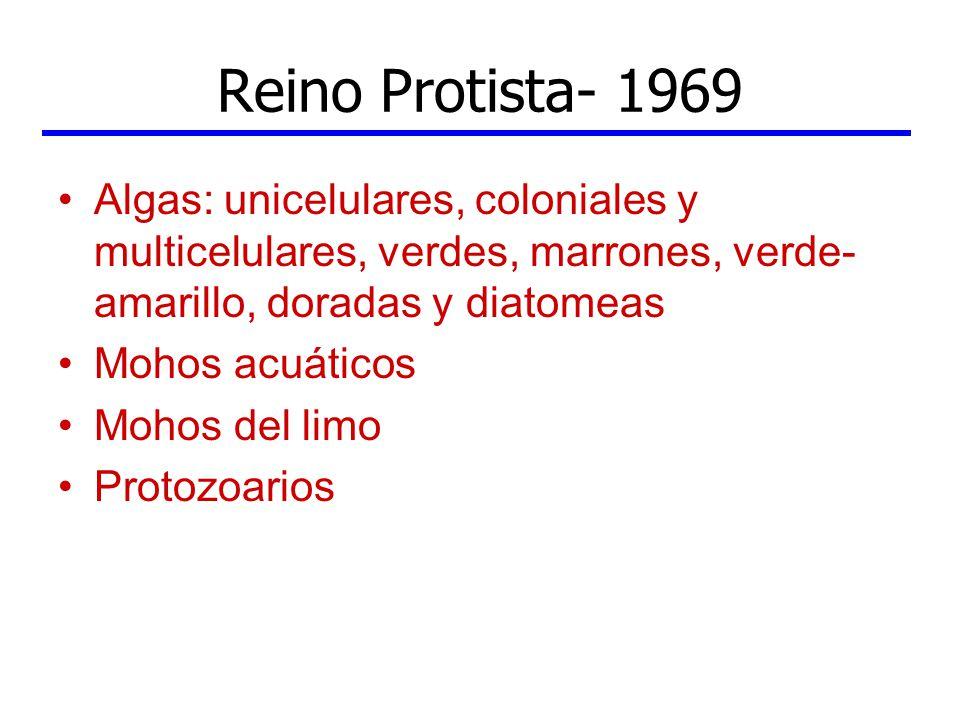 Reino Protista- 1969 Algas: unicelulares, coloniales y multicelulares, verdes, marrones, verde-amarillo, doradas y diatomeas.