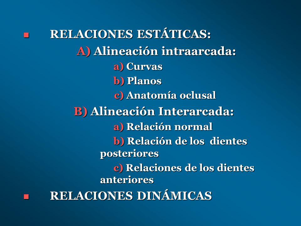 RELACIONES ESTÁTICAS: A) Alineación intraarcada: