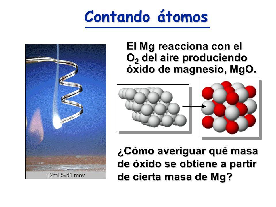 Contando átomos El Mg reacciona con el O2 del aire produciendo óxido de magnesio, MgO.