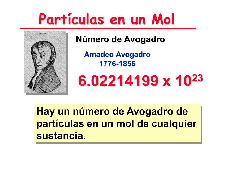 Partículas en un Mol Número de Avogadro. Amadeo Avogadro. 1776-1856. 6.02214199 x 1023.