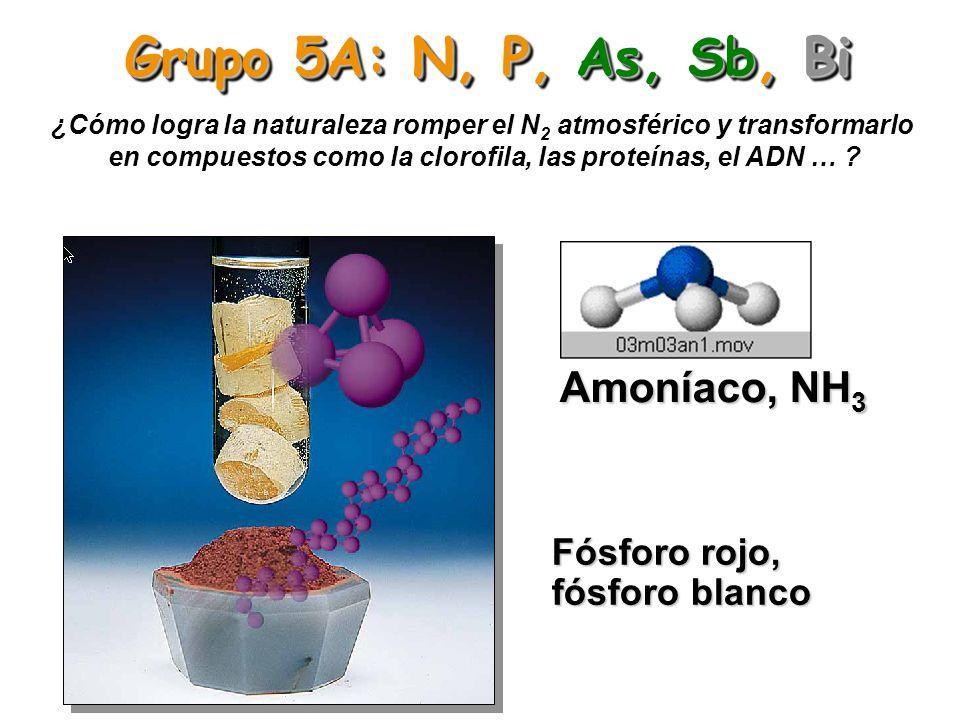 Grupo 5A: N, P, As, Sb, Bi Amoníaco, NH3 Fósforo rojo, fósforo blanco