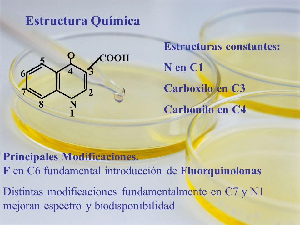 Estructura Química Estructuras constantes: N en C1 Carboxilo en C3