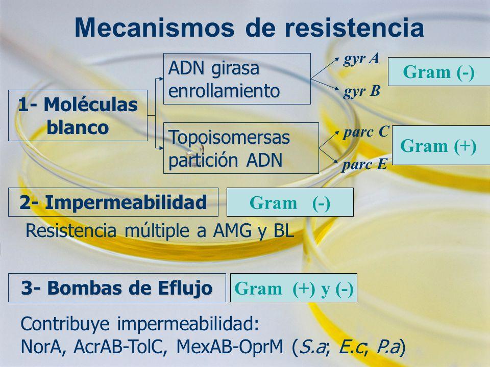 Mecanismos de resistencia