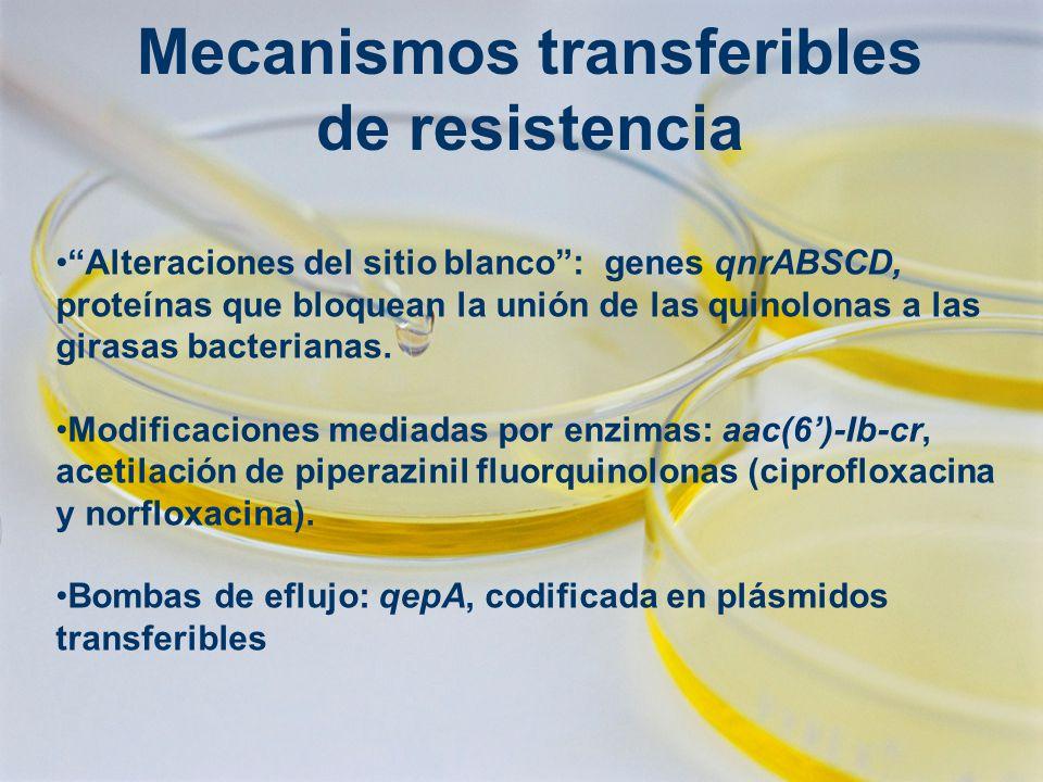 Mecanismos transferibles de resistencia