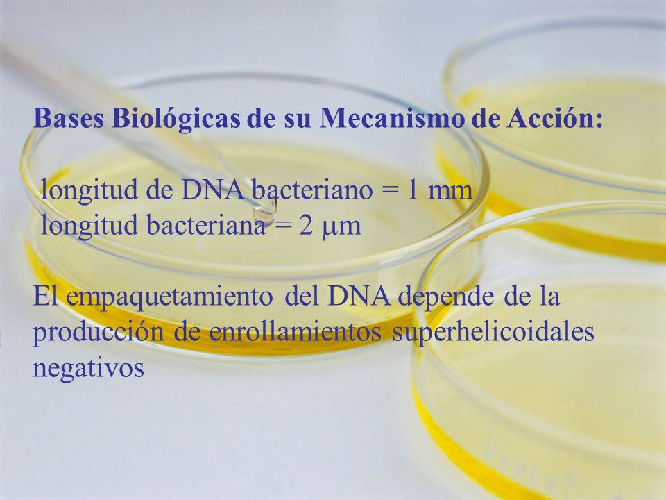 Bases Biológicas de su Mecanismo de Acción: