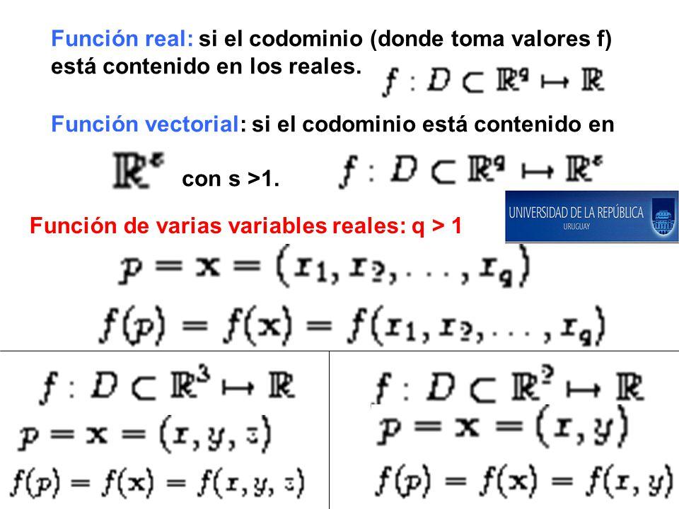 Función real: si el codominio (donde toma valores f)