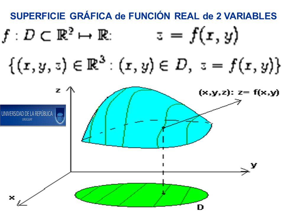 SUPERFICIE GRÁFICA de FUNCIÓN REAL de 2 VARIABLES