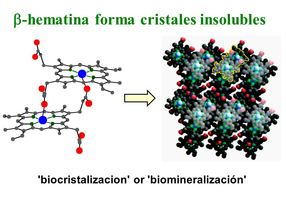 b-hematina forma cristales insolubles