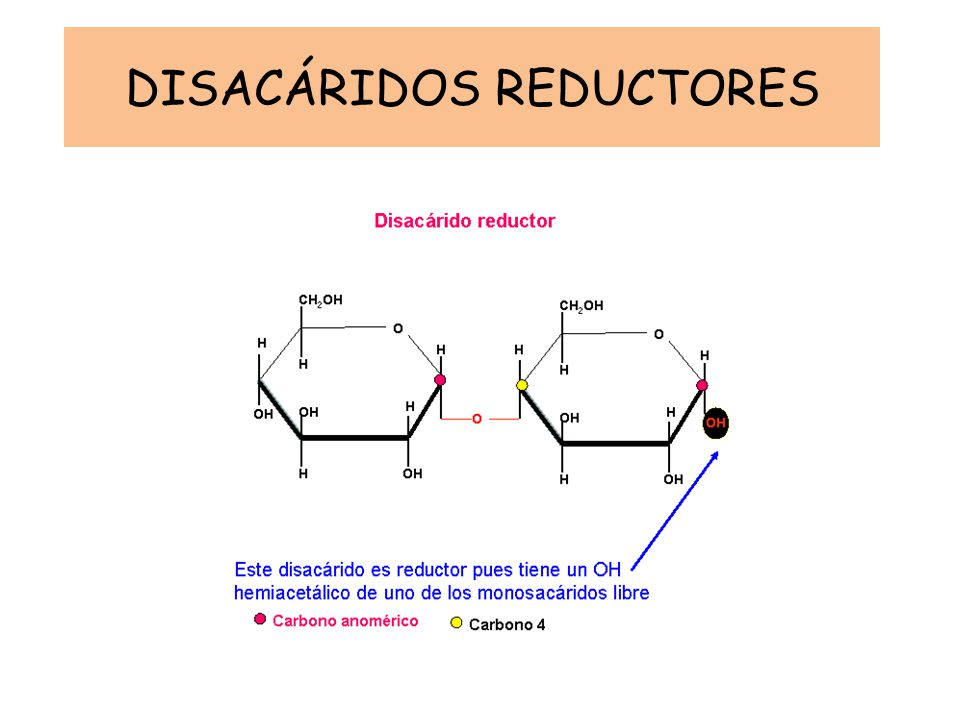 DISACÁRIDOS REDUCTORES