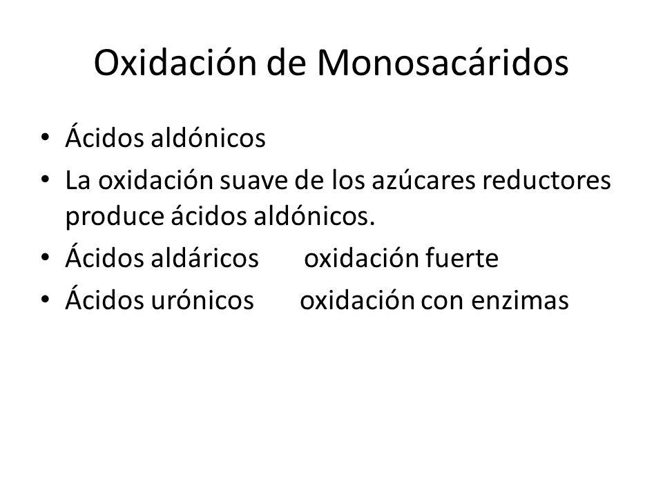 Oxidación de Monosacáridos