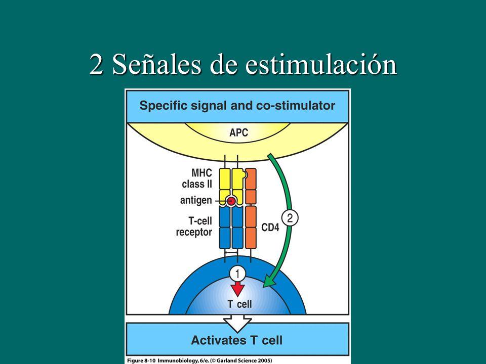 2 Señales de estimulación
