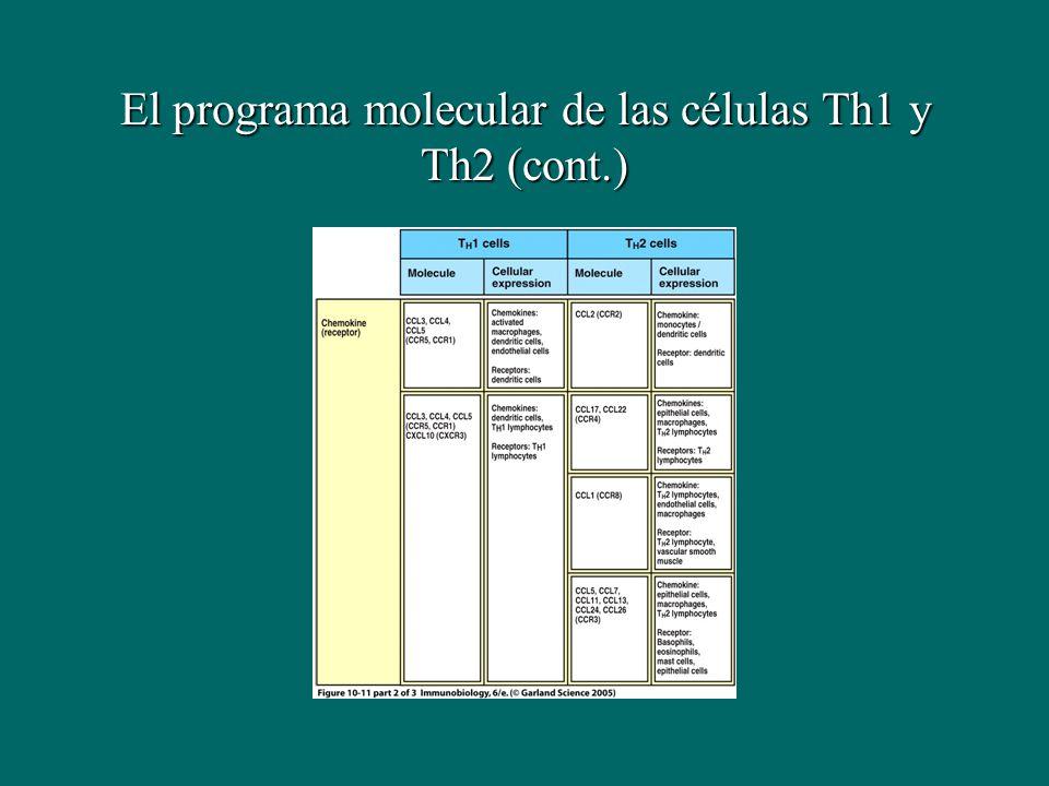 El programa molecular de las células Th1 y Th2 (cont.)