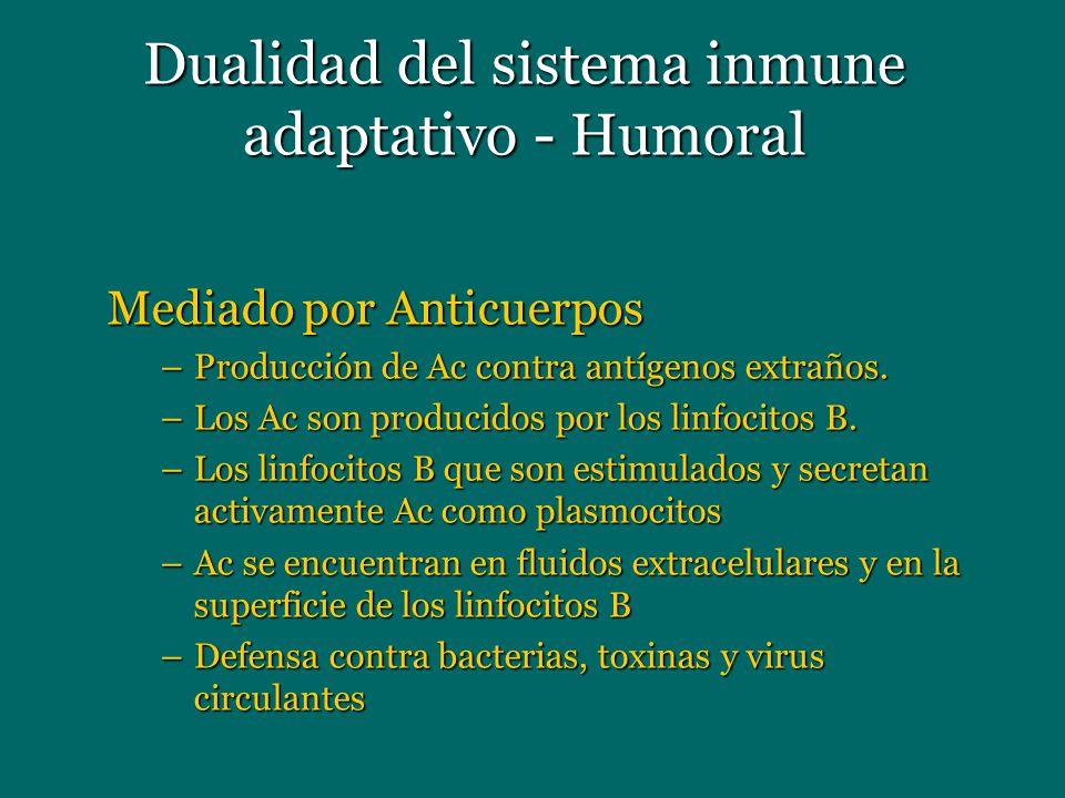 Dualidad del sistema inmune adaptativo - Humoral